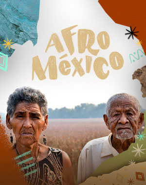 POSTER_AFROMEXICO